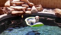 Shawn on raft